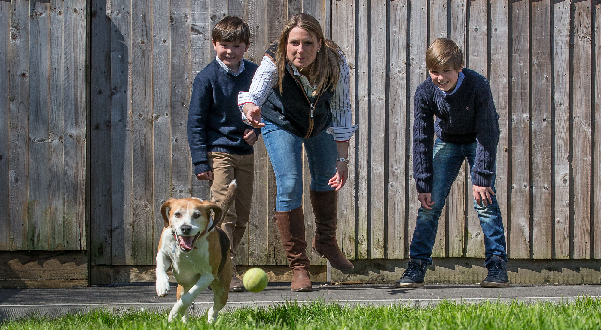 Welcome to Ledbury Lodge Kennels - A Family Home-from-Home Kennels